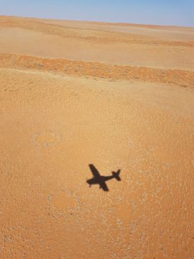Nossa sombra no deserto