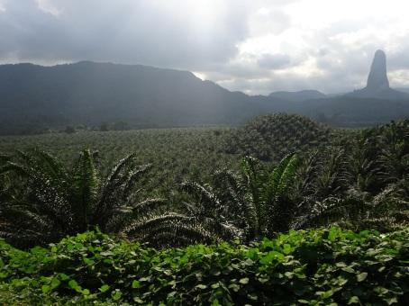 São Tomé - Green Green Green